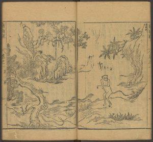 Xingxing (ape)